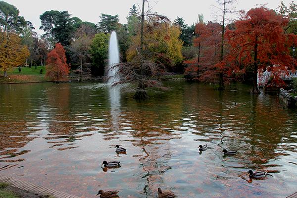 Lago artificial do Palácio de Cristal, uma explosão de cores em pleno outono...