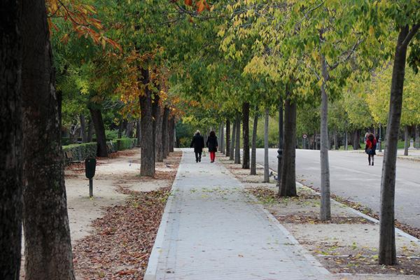 Uma imensa área de muito verde e tranquilidade...