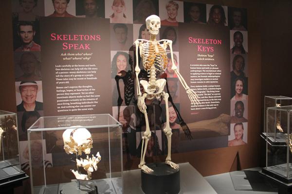 Aqui os ossos contam história...