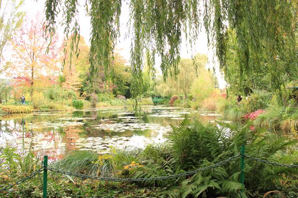 Vista geral do lago de Monet, no jardim das águas. Um dos quadros dele é igualzinho a isso, o paraíso.