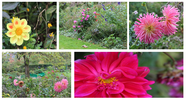 Jardim Clos Normand, mesmo no outono conseguimos pegar algumas lindas flores, imagine na primavera...